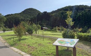 岩室湯のさと公園