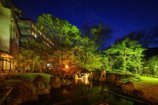1000坪の庭園「静雅苑」ライトアップ
